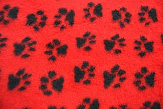 Red/Black Paws